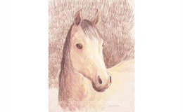 "Mixed media artwork of ""Emma"" a gentle horse"