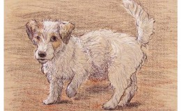 "Mixed media artwork of ""Lucy"" a mischievous Jack Russel"