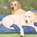 "Watercolour of ""Naya & Kaela"" two golden retrievers"