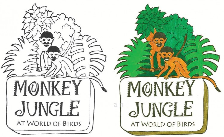 Monkey Jungle graphic design