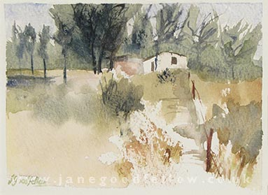 Shack watercolour