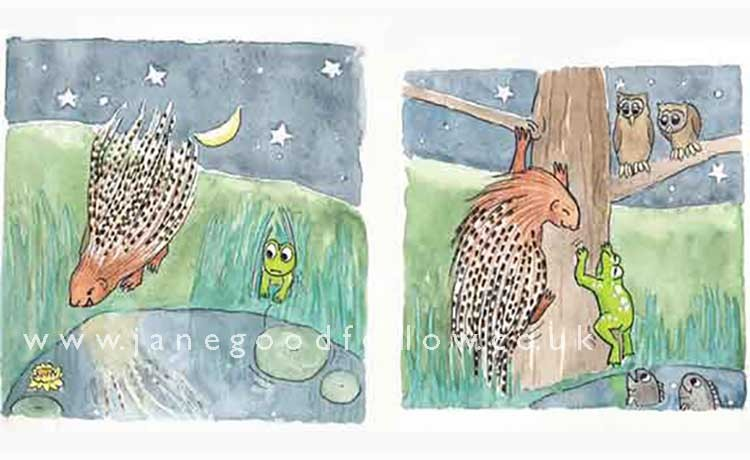 """""""Frog & Porcupine"""" illustration"""