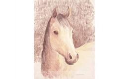 """Mixed media artwork of """"Emma"""" a gentle horse"""