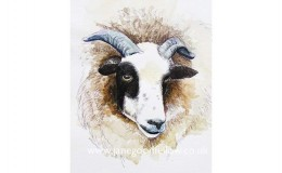 "Mixed media artwork ""Ewe Head"" showing an interesting combination of textures"