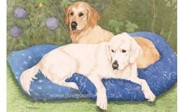 "Watercolour of ""Naya & Kaela"" two golden retrievers"