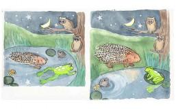 Frog & Porcupine Illustration